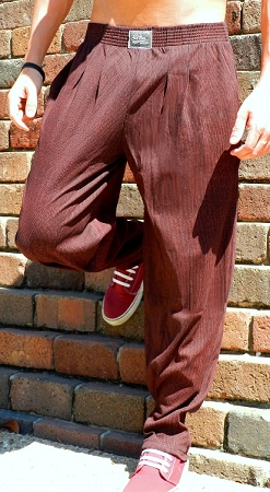Style 500 Classic Infrared Baggy Pants
